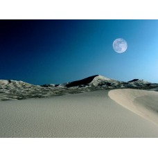 Sand and Deserts Vinyl Wall Graphics 02