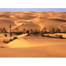Sand and Deserts Vinyl Wall Graphics 06
