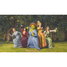 Shrek Decals and Vinyl Wall Graphics 10