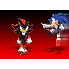 Sonic and shadow the hedgehog