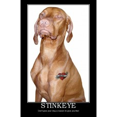 stinkeye demotivational