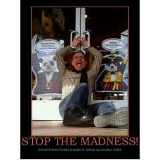 stop the madness pandas are strange demotivational
