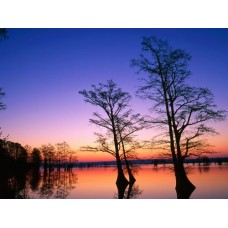 Sunrise and Sunsets Wall Decals 009