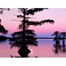 Sunrise and Sunsets Wall Decals 010