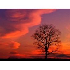 Sunrise and Sunsets Wall Decals 015