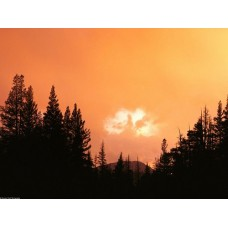Sunrise and Sunsets Wall Decals 019