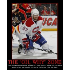 the oh why zone hockey nuts pain demotivational