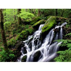 Waterfalls and Rivers Wall Decals 002