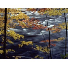 Waterfalls and Rivers Wall Decals 003