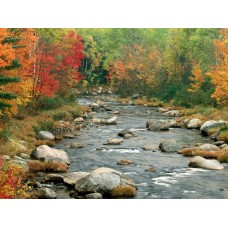 Waterfalls and Rivers Wall Decals 004