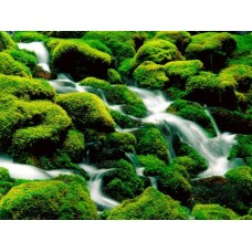 Waterfalls and Rivers Wall Decals 012