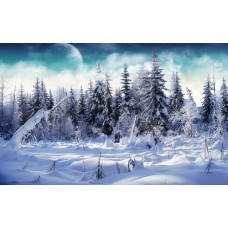 Winter and Ice Adhesive Wall Decals 001
