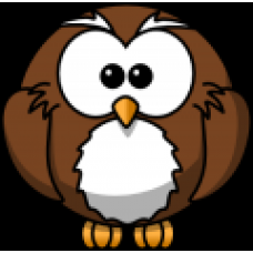 Owl Color Decal